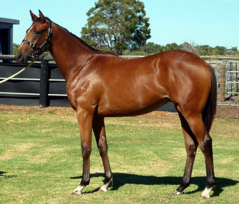 Lot 136 Key Business-Pathlessly..filly