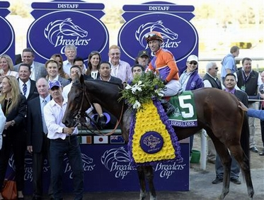 Beholder Distaff win celebrations