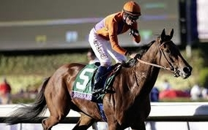 Beholder jockey salute Distaff win